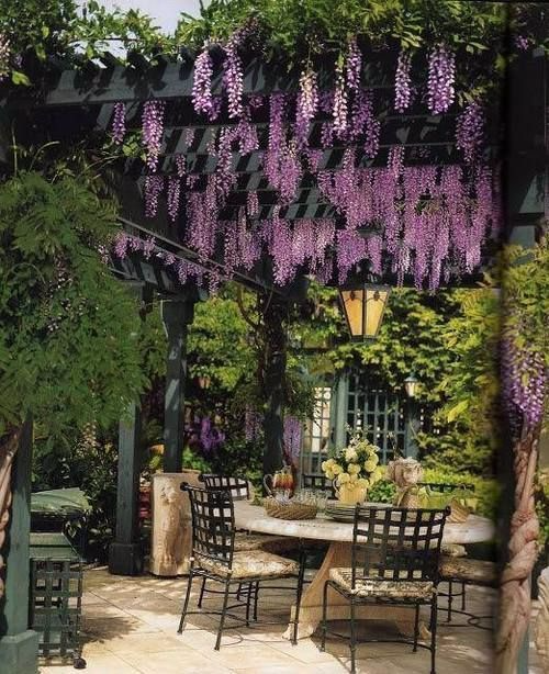What-is-a-Pergola-Pergola-Defined-Design-Ideas-QA-garden-issue-8