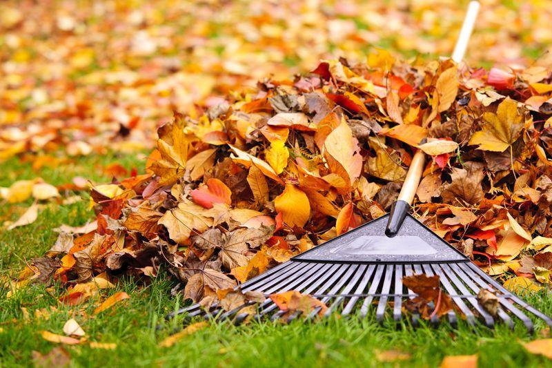 1-raking