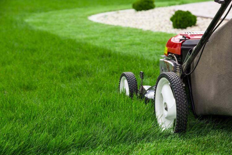 Summer-lawn-equipment-storage