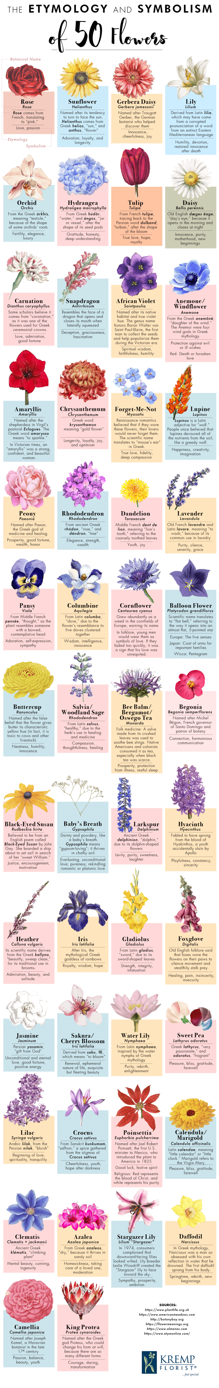 Etymology-symbolism-50-flowers-5_compressed