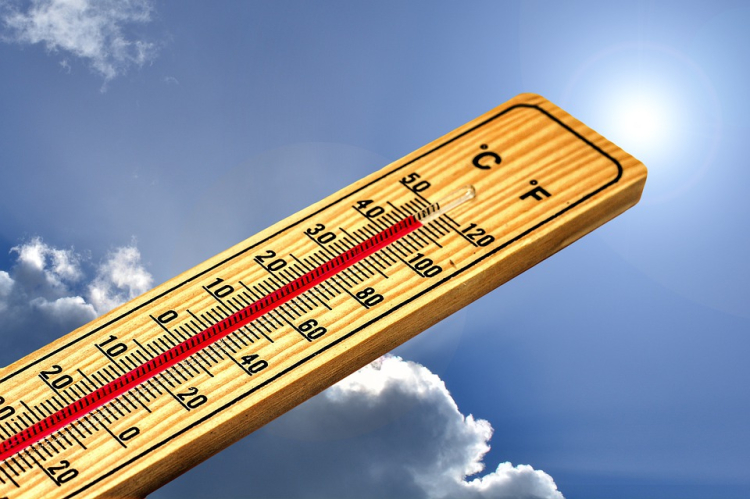 Thermometer-4767443_960_720